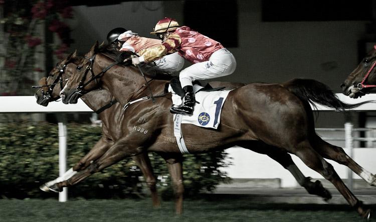 HK horserace-3